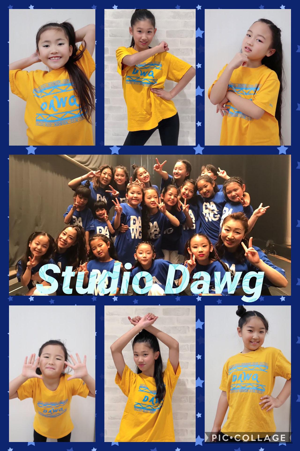 Dance Studio Dawg
